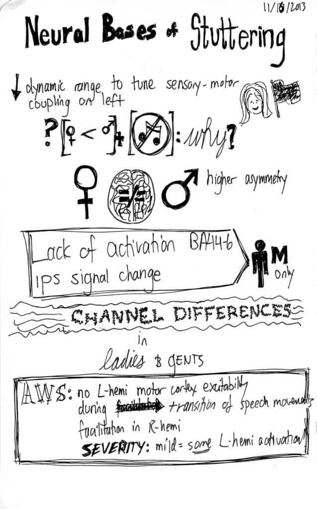 Neural bases sketchnotes 1