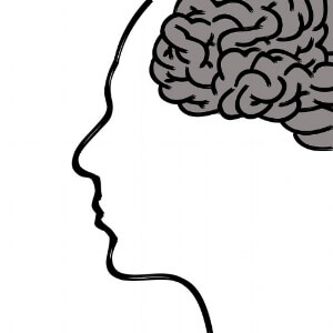 Illustrated human head silhouette with brain