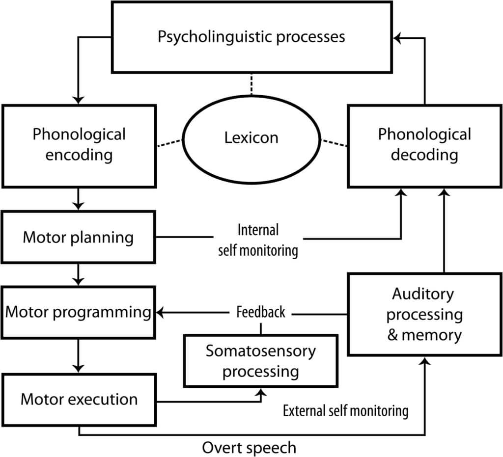 Flowchart of cognitive and motor functions involved in speech processing
